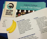 Last spring, Cabrini was declared a fair trade school. (Mackenzie Harris/Editor In Chief)